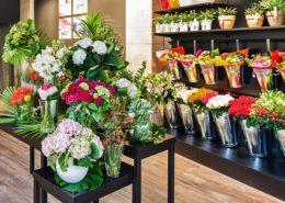 Fiori, piante, accessori