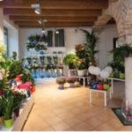 Fiorito Lodi negozio di fiori in franchising