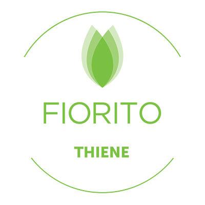 logo-thiene