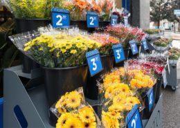 Esposizione esterna dei fiori